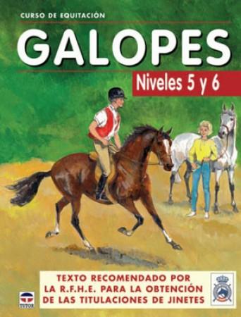 Galopes Niveles 5 y 6 curso de Equitacion