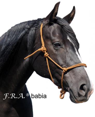 F.R.A. Babia Cabezada Doma Natural