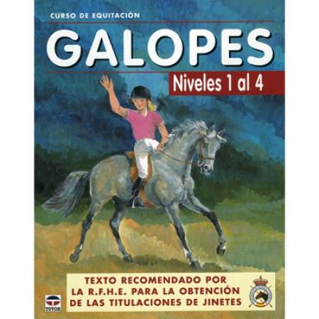 Galope Niveles 1 al 4 curso de Equitacion