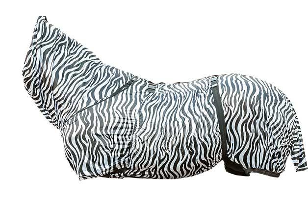 Manta -Zebra-