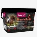 Pavo MuscleBuild + Portes
