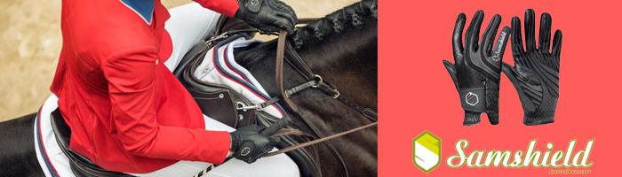 cascos equitación