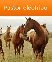Pastor electrico