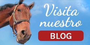 Visita nuestro nuevo Blog